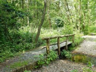 Brücke im Zarth