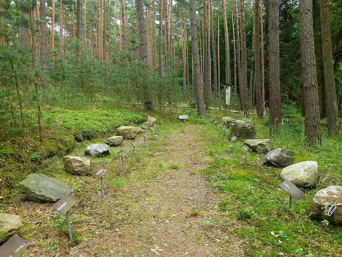 Geologiegarten am Briesener Bach