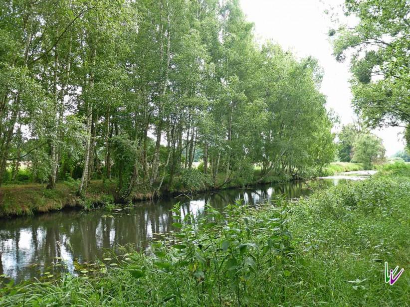 ruhig ist es am Pfefferfliess bei Stangenhagen...