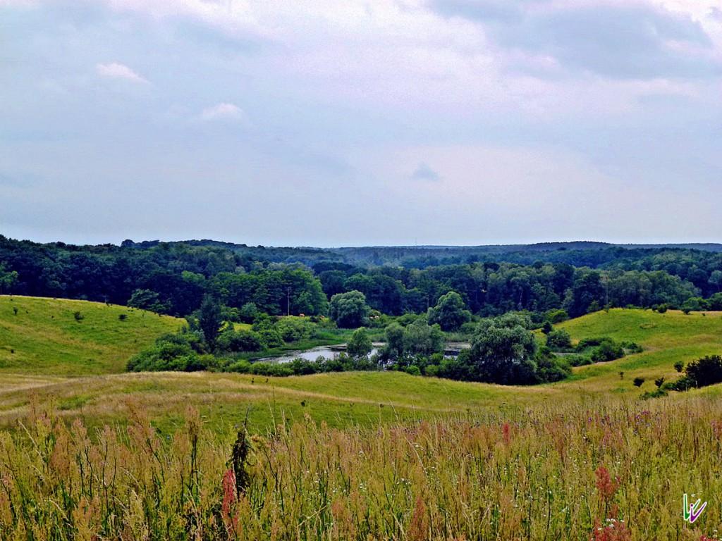 Weite Landschaft in Brandenburg