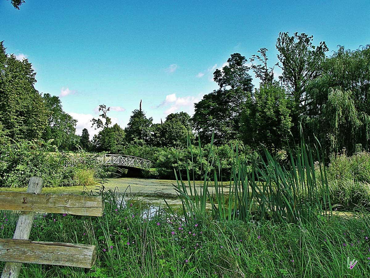 Schlosspark Criewen mit Teich