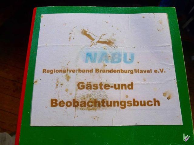 Gaesrebuch am Strengsee