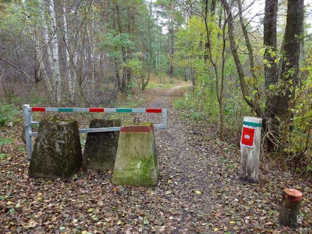 Absperrung im Wald