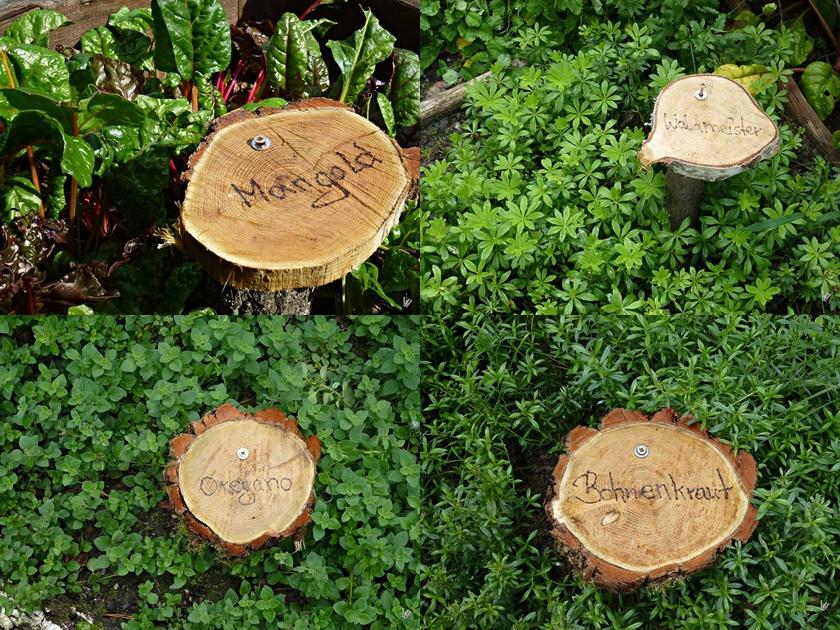 Kräuter im Barfusspark Beelitz