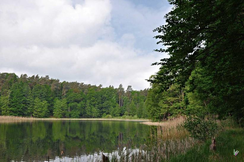 Buckow-See im Grumsin