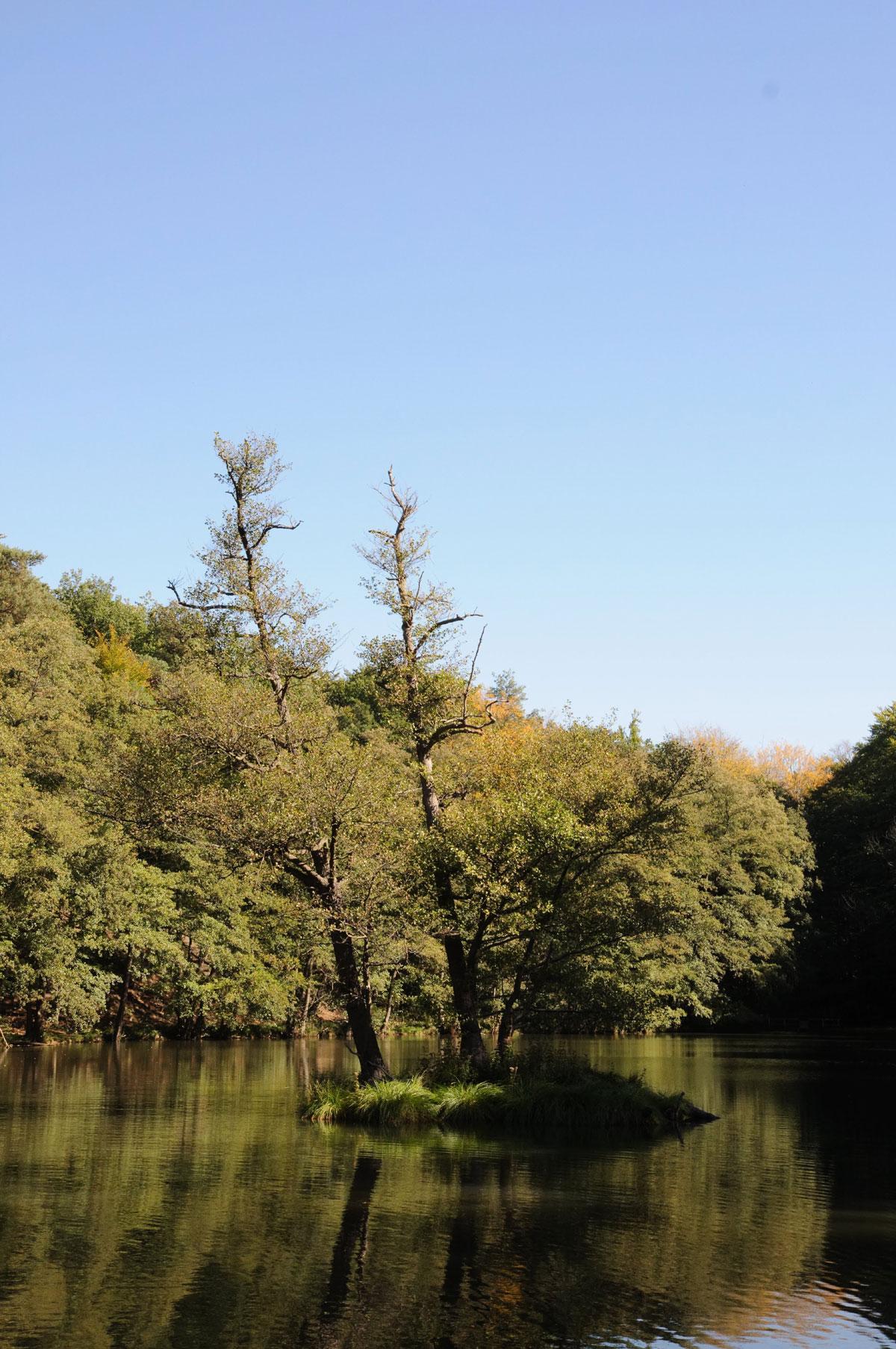 Teufelssee bei Bad Freinewalde