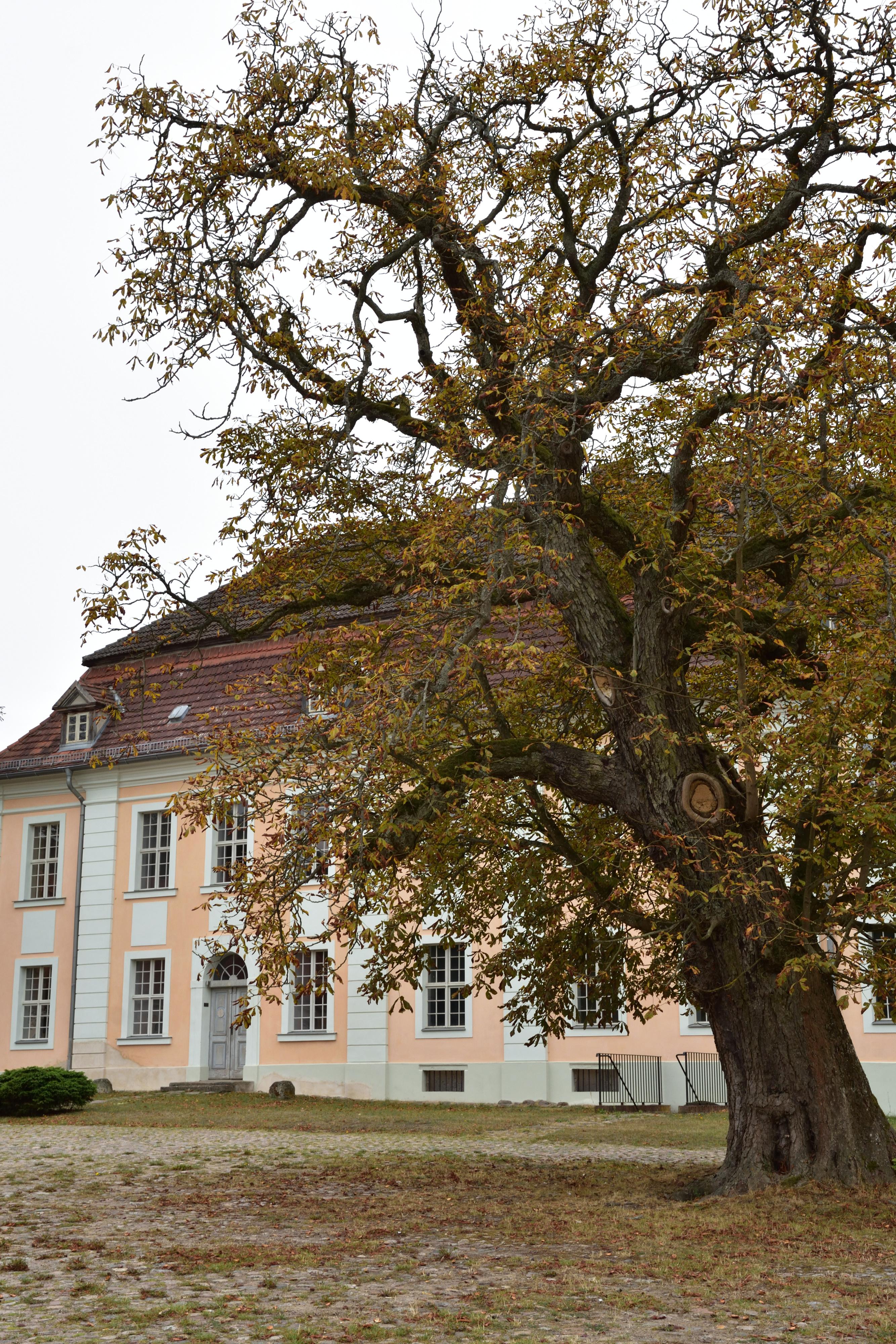 Haupthaus Gut Zernikow