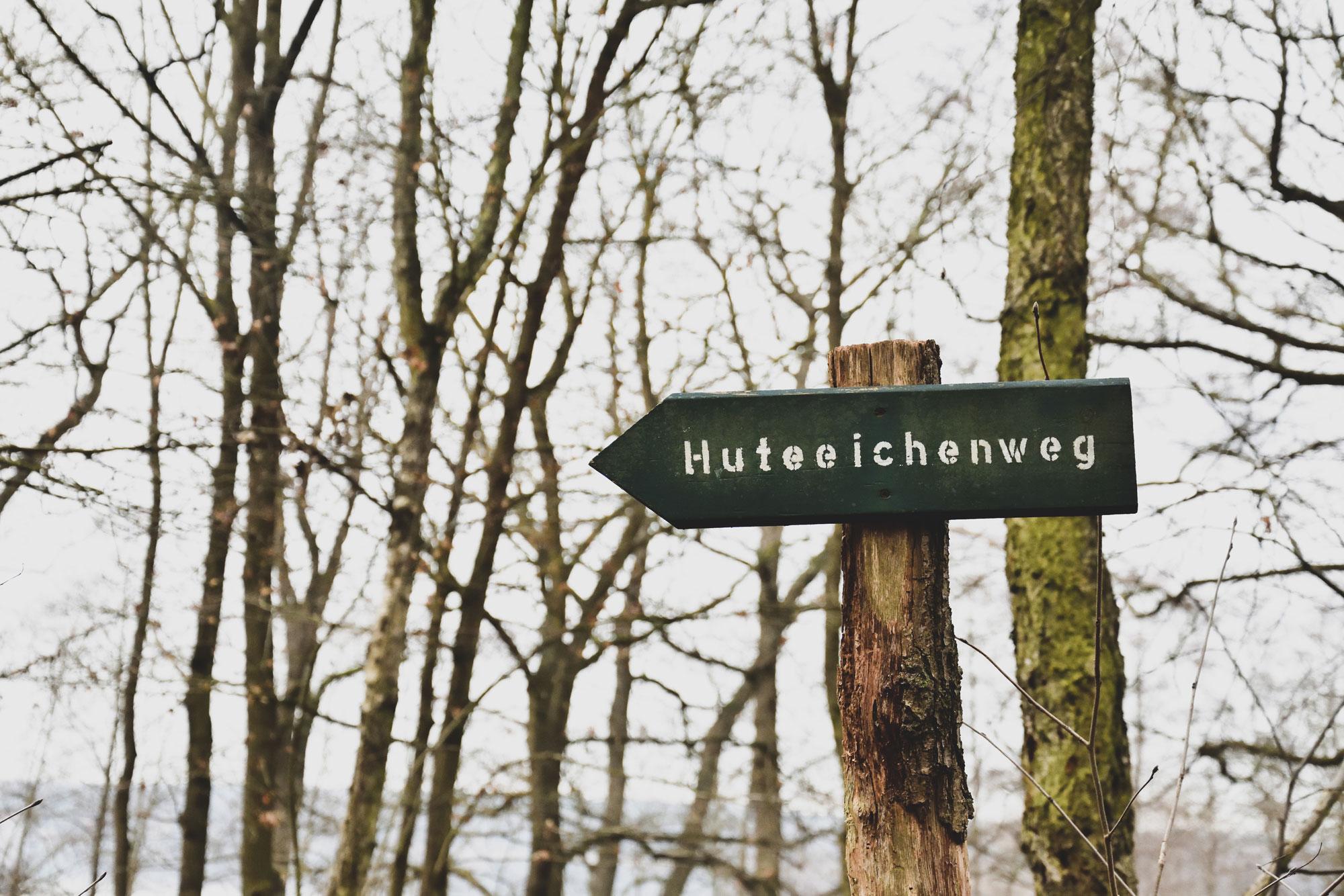 Huteeichenweg Scjwielowsee Schild