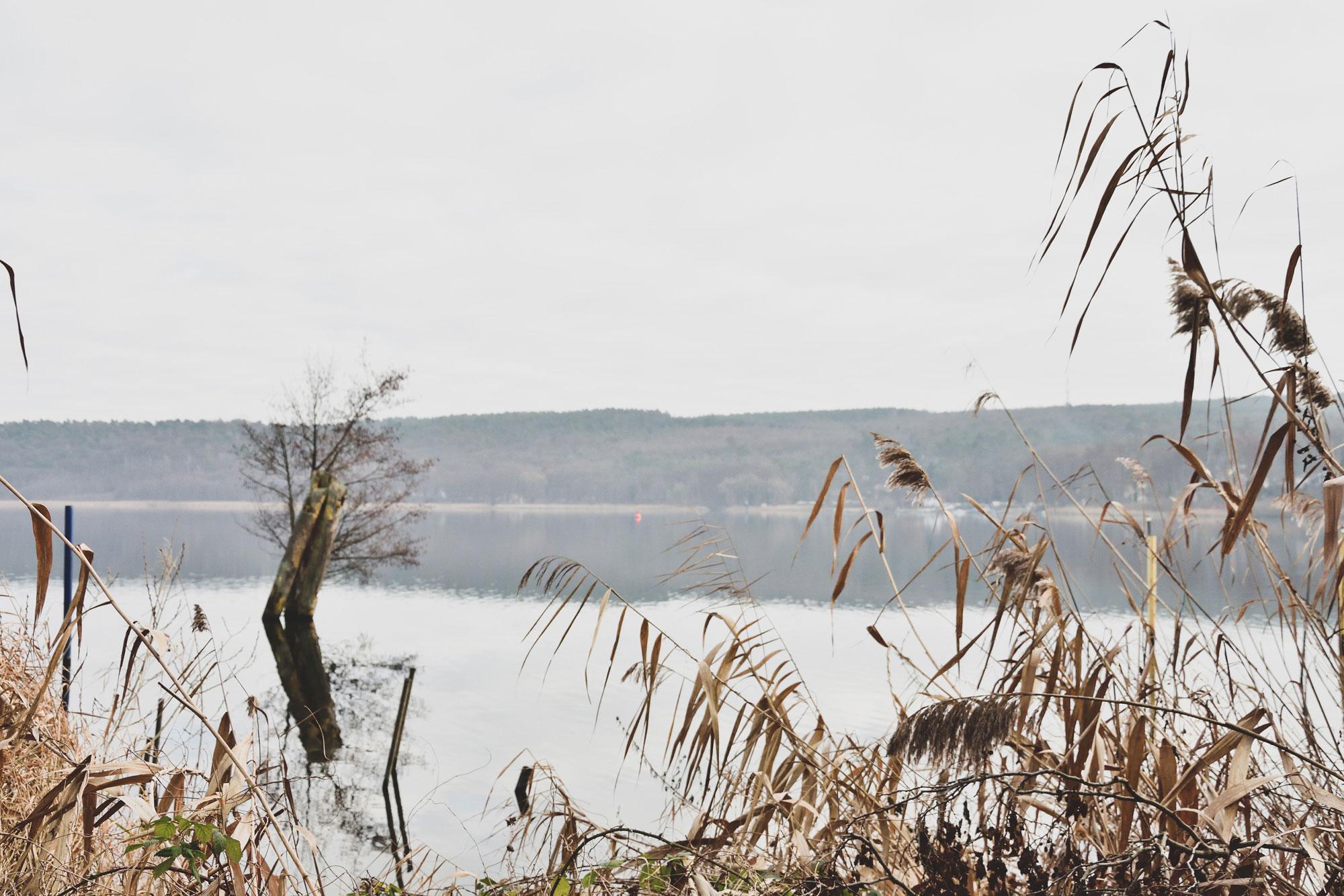 Blick auf den Schwielowsee