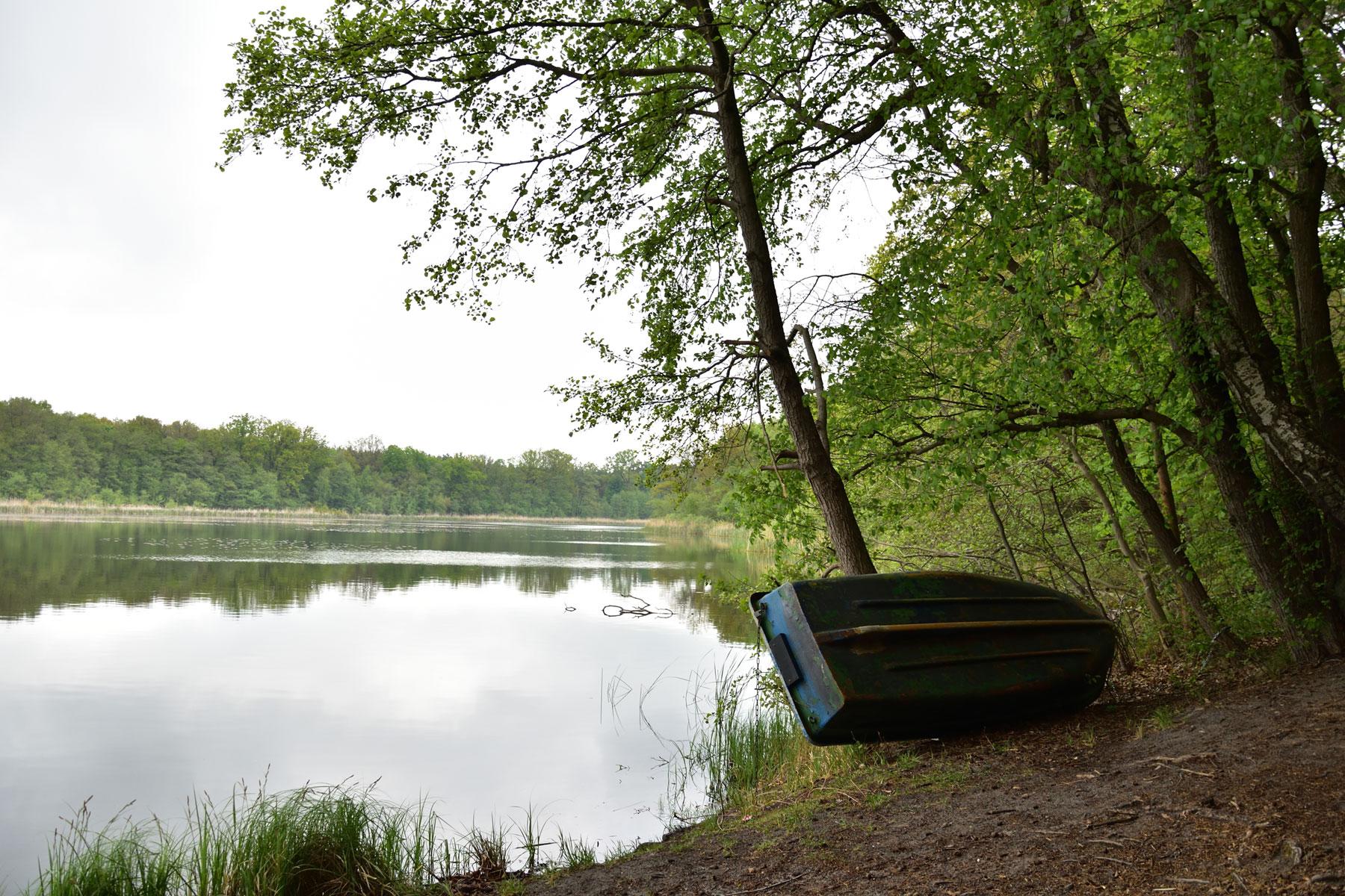 Wandern an Brandenburger Seen