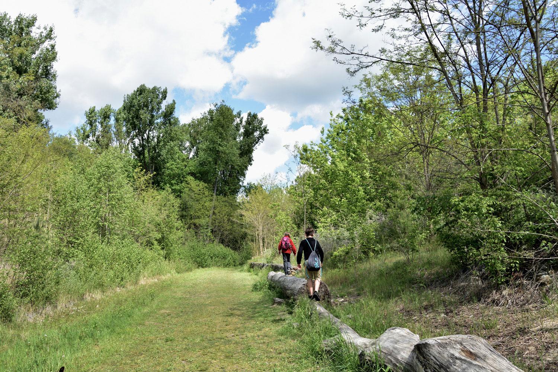 Blancieren entlang des Waldwichtepfad