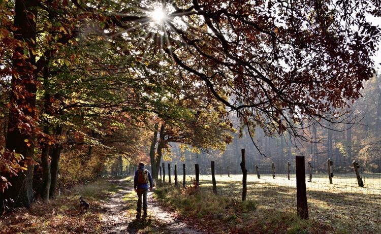 Wanderung in Brandenburg
